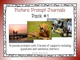 Picture Prompts 1 - Leveled Journal Writing for Special Ed