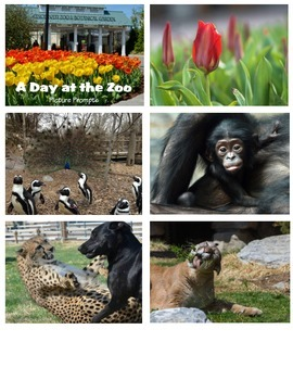 Picture Prompts - A Day at the Zoo (W 1.3)