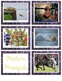 Picture Prompts for Writing Workshop