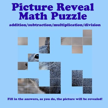 Picture Reveal Math Puzzle (add/sub/mult/div)