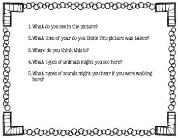 Picture Scene Discussion Cards