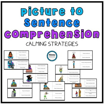 Picture/Sentence Comprehension- Calming Strategies