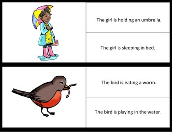 Picture/Sentence Comprehension- SPRING