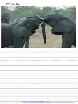 Picture Stories African Animals