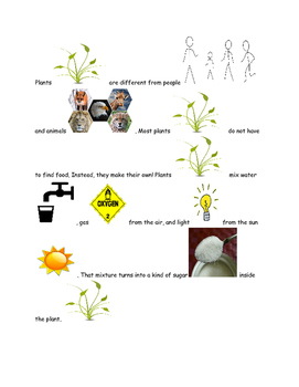 Picture Stories Plants make their own food