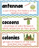 Picture Vocabulary Cards with Definitions for Houghton Mifflin - Grade 2