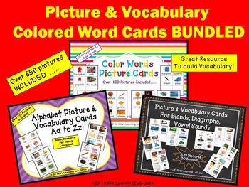 Picture & Vocabulary Word Cards BUNDLED (cards for 5 skills)