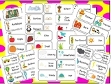 Picture Word Flashcards Curriculum Download. Preschool-3rd Grade. All Subjects.