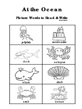 Picture Words to Read & Write (Various Themes)