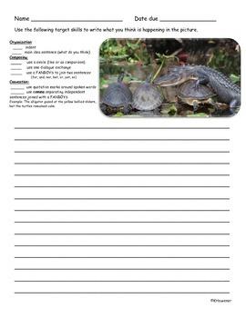 Picture Writing -Alligator