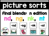 Picture and Word Sort:  Final N Blends Task Cards