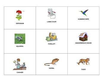 Picture cards for Vowel Controlled R words