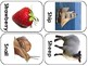 Picture cards for alphabet matching