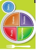 Picture sort for new food pyramid plate for students with autism