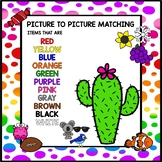 Picture to Picture Matching - Colors BUNDLE!!