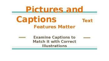 Pictures and Captions Text Features