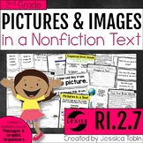 Images in a Text- Nonfiction Text Features 2nd Grade RI.2.