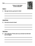 Pictures of Hollis Woods - Guided Reading Packet