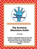Pig Anatomy Dissection Guide