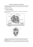 Pig Heart Dissection (Plus worksheets)