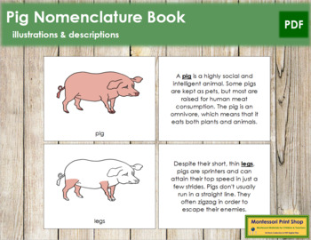 Pig Nomenclature Book