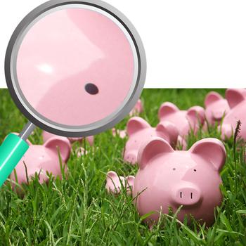 Piggy Bank Photos 06 Photograph Clip Art Set for Commercial Use