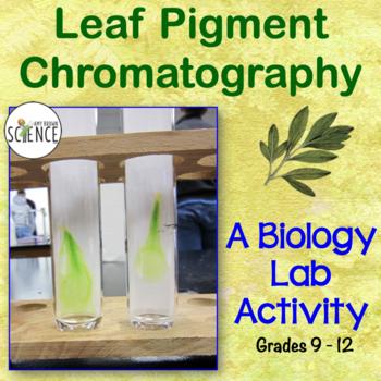 Leaf Pigment Chromatography Lab