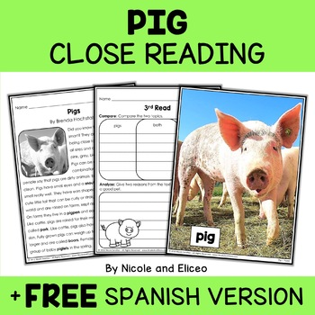 Close Reading Passage - Pig Activities