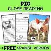 Pig Close Reading Passage Activities