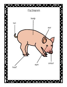 Pigs:  A Non-Fiction Unit