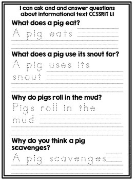Pigs- An informational text common core unit