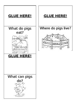 Pigs! Pigs! Pigs! Lap book