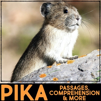 Pika Informational Article, QR Code Research & Fact Sort
