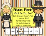 Pilgrim, Pilgrim What Do You See?  2 Versions PLUS Word & Picture Cards