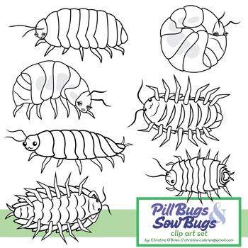 Roly Poly / Pill Bug and Sow Bug Clip Art Set