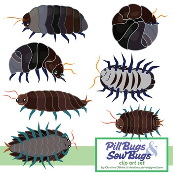 Pill Bugs Teaching Resources Teachers Pay Teachers