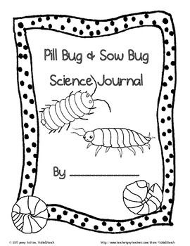 Pill Bugs and Sow Bugs for Kindergarten Science
