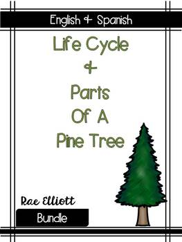 Pine Tree Label & Life Cycle