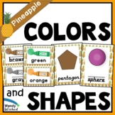 Pineapple Classroom Decor Colors & Shapes Posters