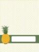 Pineapple Binder Covers + Spines EDITABLE & FREE