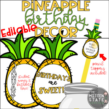 Pineapple Birthday Decor & Display