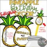Pineapple Birthday Decor & Display EDITABLE