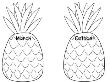 Pineapple Birthday Display