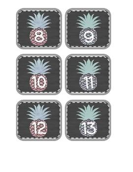 Pineapple Chalkboard Numbers