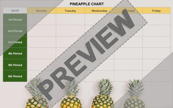 Pineapple Chart - Instructional Coaching