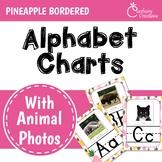 Pineapple Classroom Decor Alphabet Posters: Animal Photos