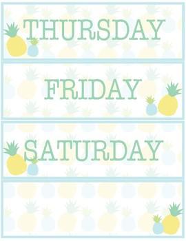 Pineapple Classroom Decor - Calendar