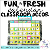 Pineapple Classroom Decor: Calendar Set