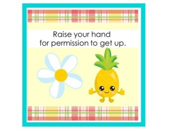 Pineapple Classroom Theme | Pineapple Theme Classroom | Class Rules Posters