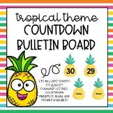 Pineapple Countdown Bulletin Board